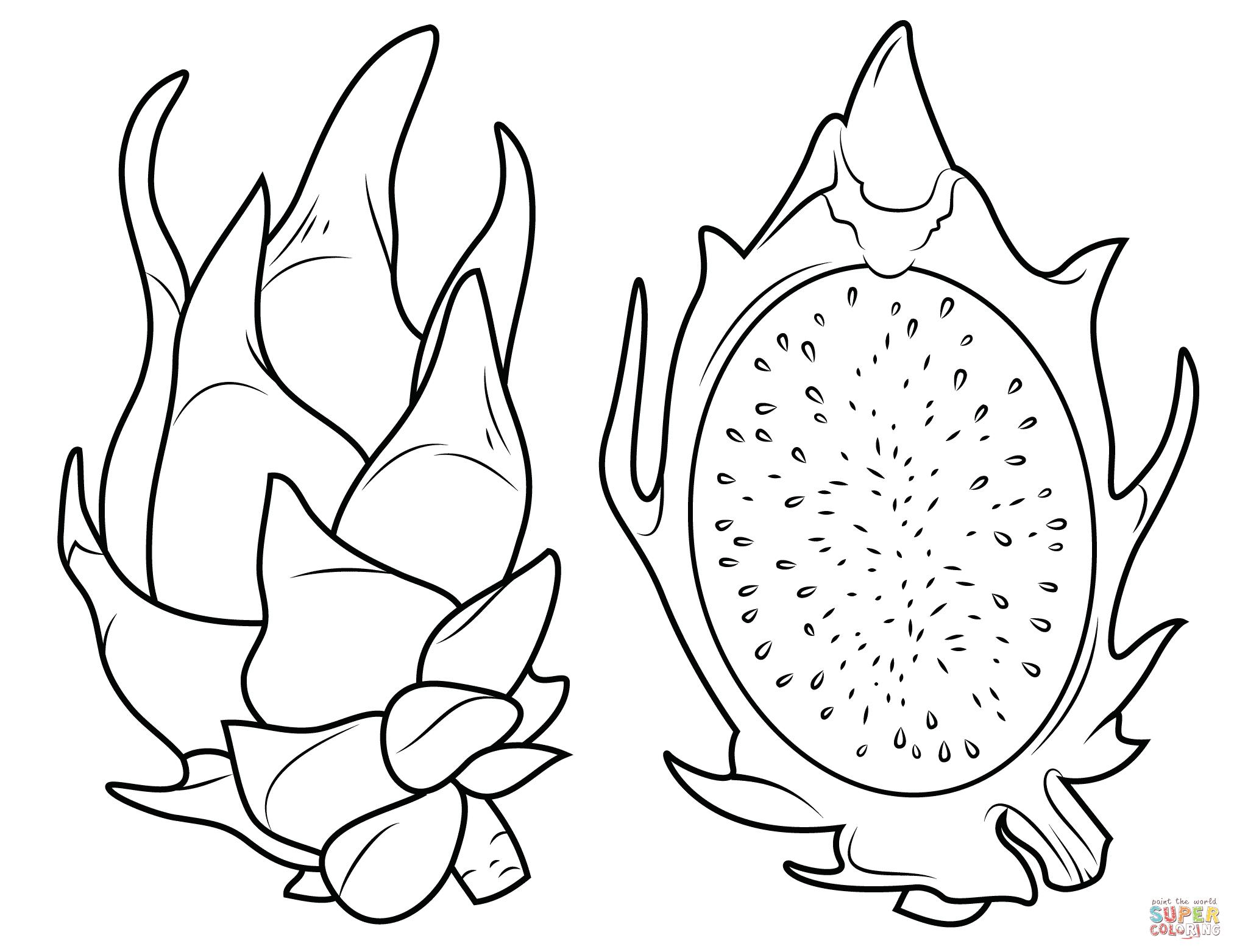 Fruit Drawing At Getdrawings