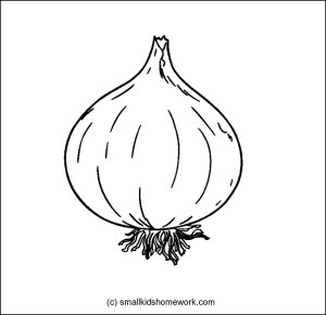 onion coloring outline vegetables drawing vegetable garlic clipart onions easy drawn pages colouring printable getdrawings archives raddish clip