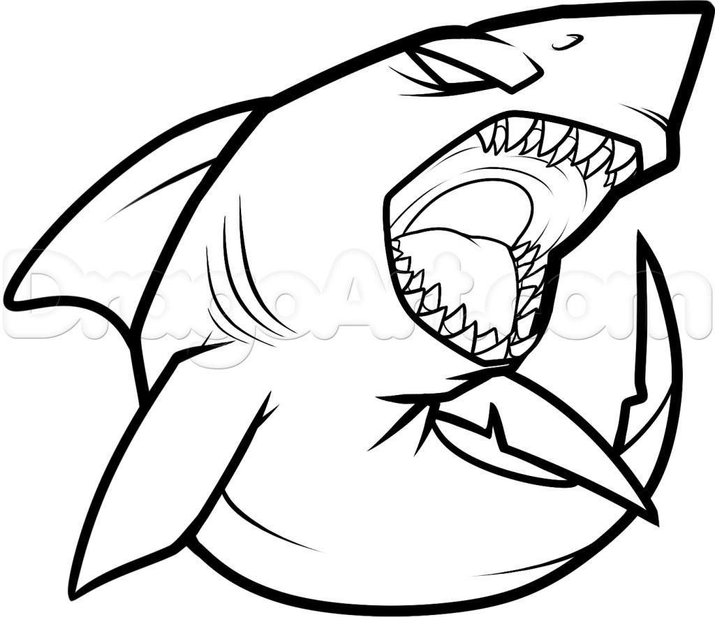 Great White Shark Drawing At Getdrawings