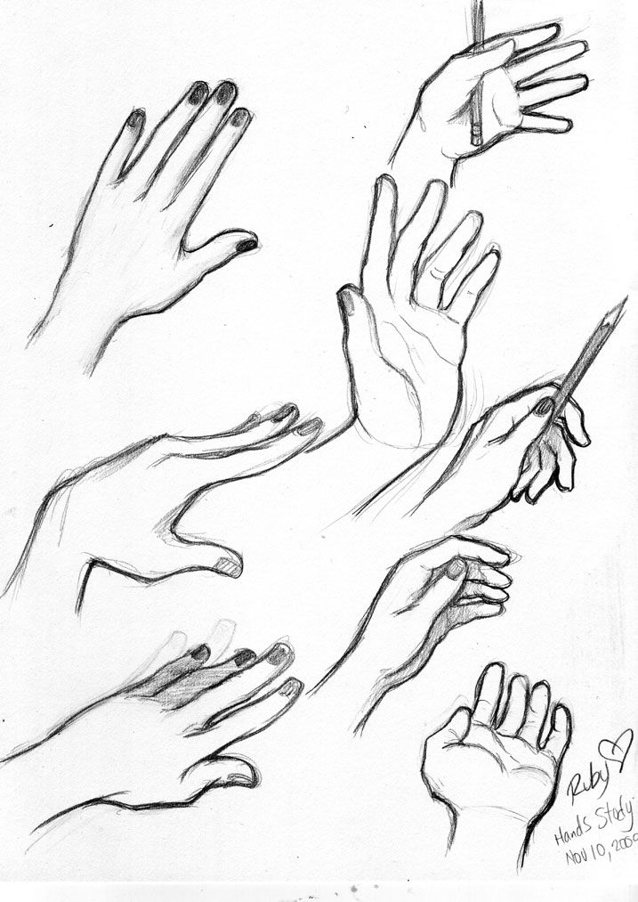 Female Hand Drawing Reference : female, drawing, reference, Hands, Reference, Drawing, GetDrawings, Download