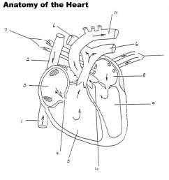 942x1024 human heart blood flow diagram human heart diagram blood flow [ 942 x 1024 Pixel ]