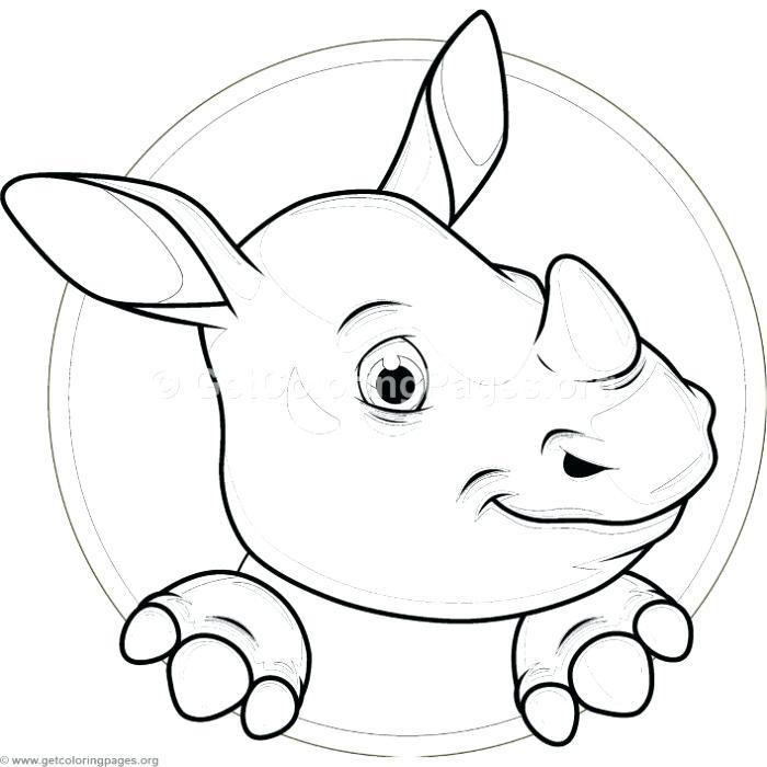 Cartoon Hippo Drawing At Getdrawings Com