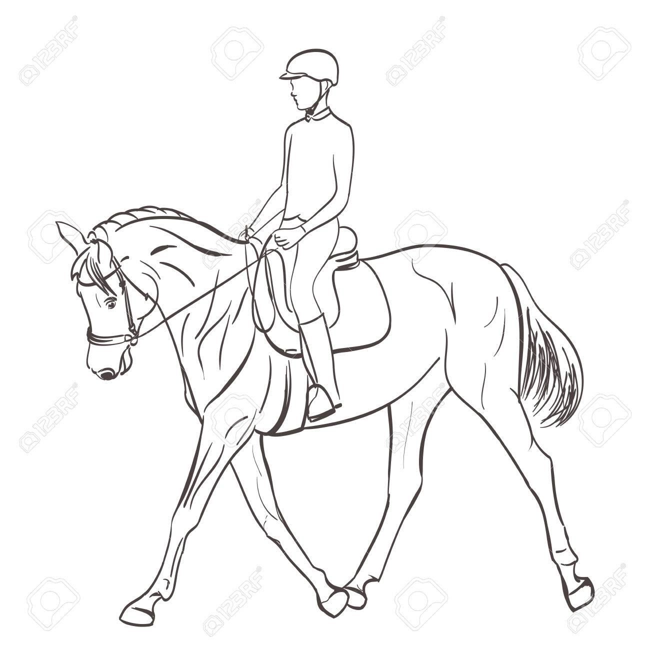 Horse And Rider Drawing At Getdrawings