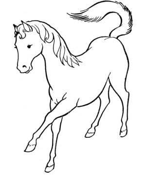 horse easy drawing template getdrawings