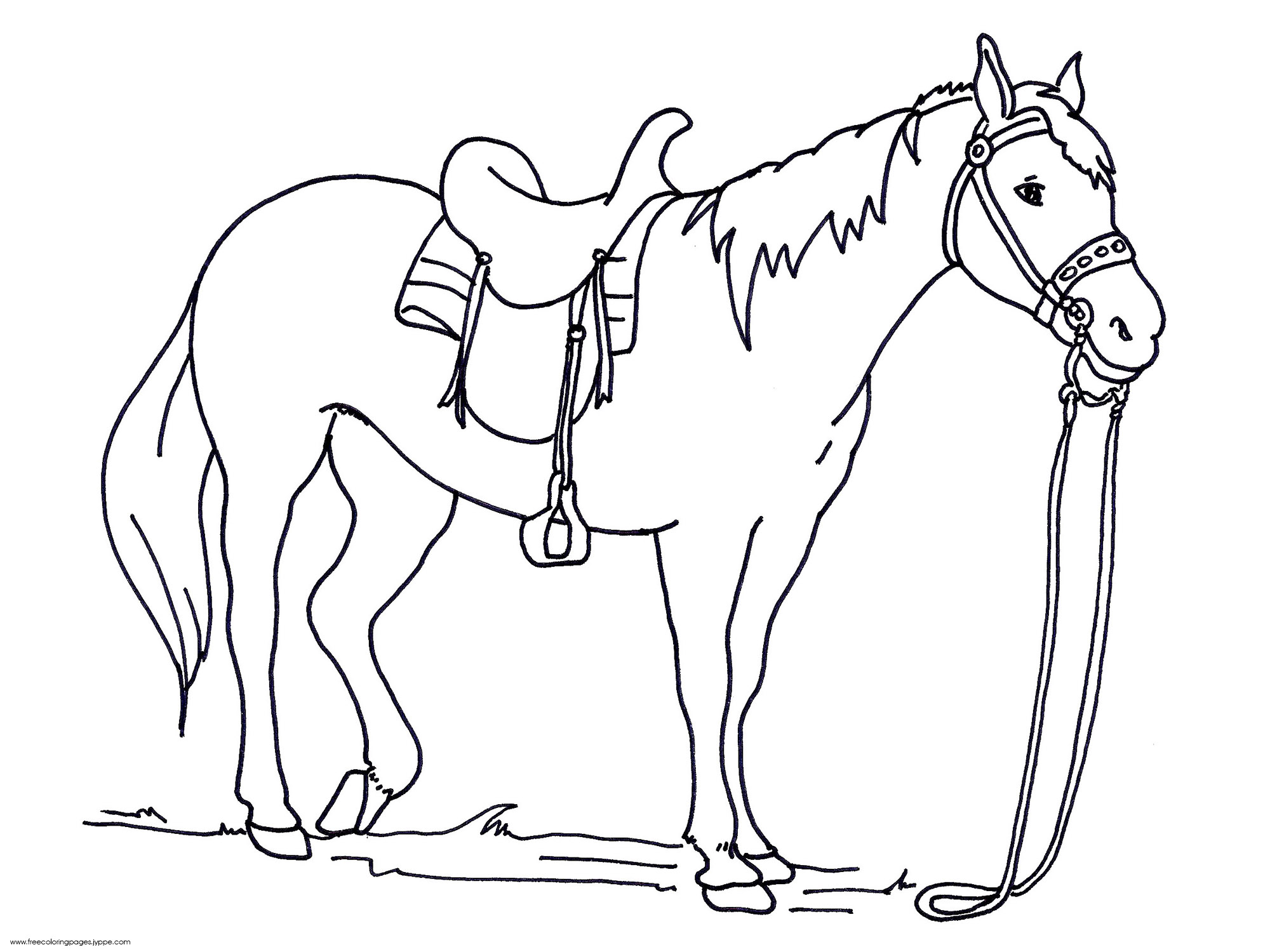 Horse Drawing Pages At Getdrawings