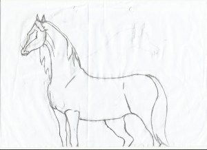horse easy head drawing pencil drawings outline illustrations children getdrawings muslim read
