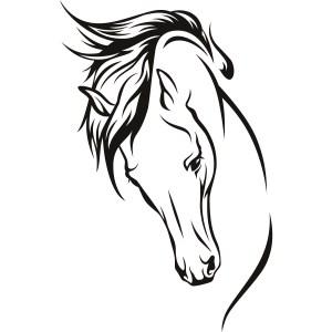horse drawing line head easy drawings simple getdrawings