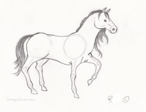 easy horses horse drawing sketches amazing getdrawings
