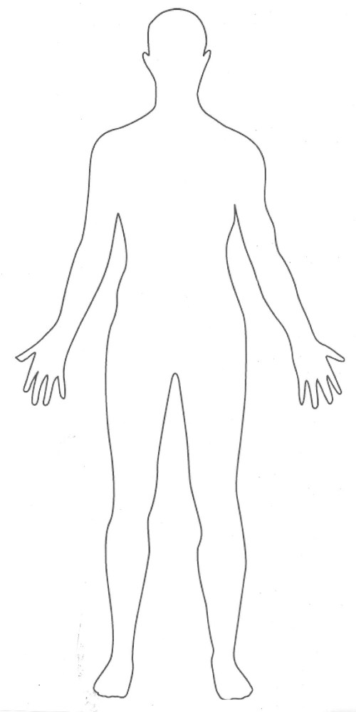 small resolution of 928x1856 human body archives