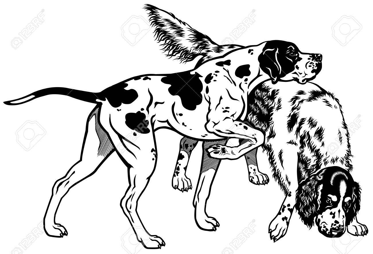 Hunting Dogs Drawing At Getdrawings