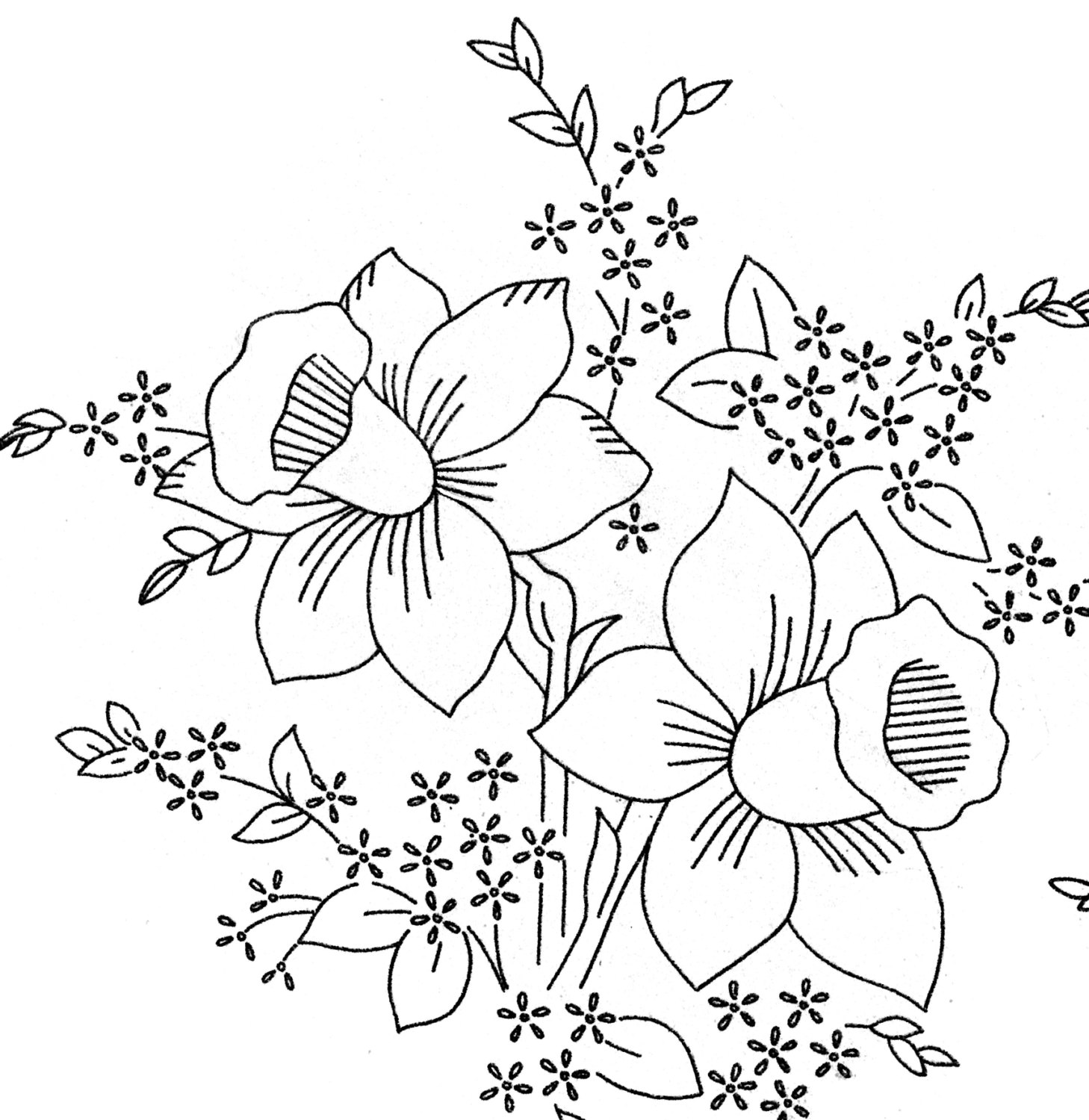 The Best Free Pansy Drawing Images Download From 50 Free