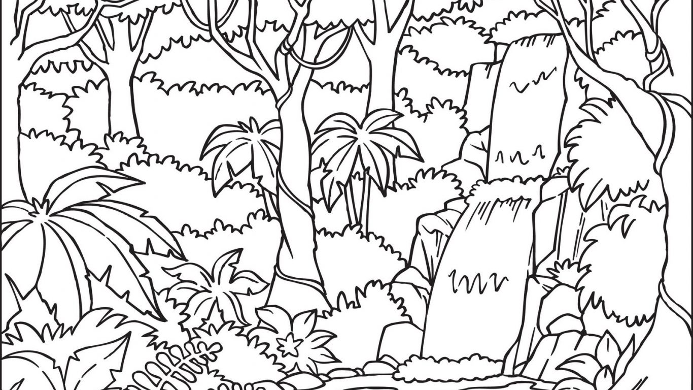 Jungle Leaves Drawing At Getdrawings
