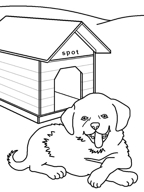 Dog House Drawing At Getdrawings Com