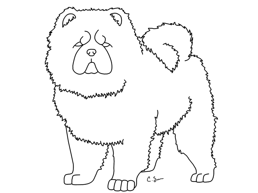 The best free Chow drawing images. Download from 21 free