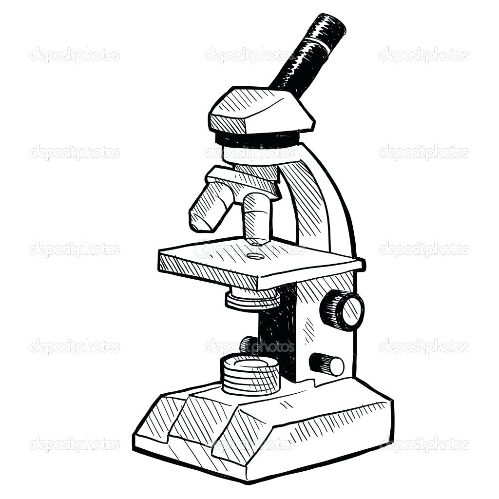 simple microscope diagram 2004 chevy silverado fuse box light drawing at getdrawings free for