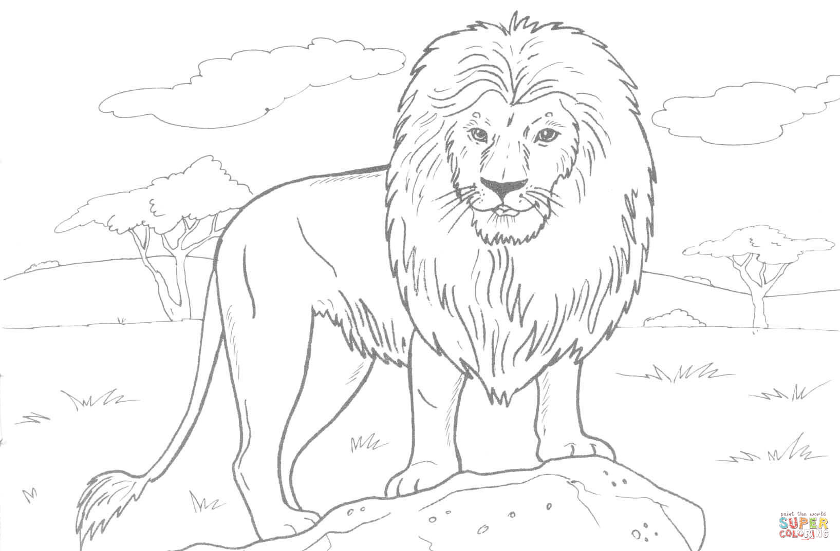 Lion Drawing Outline At Getdrawings