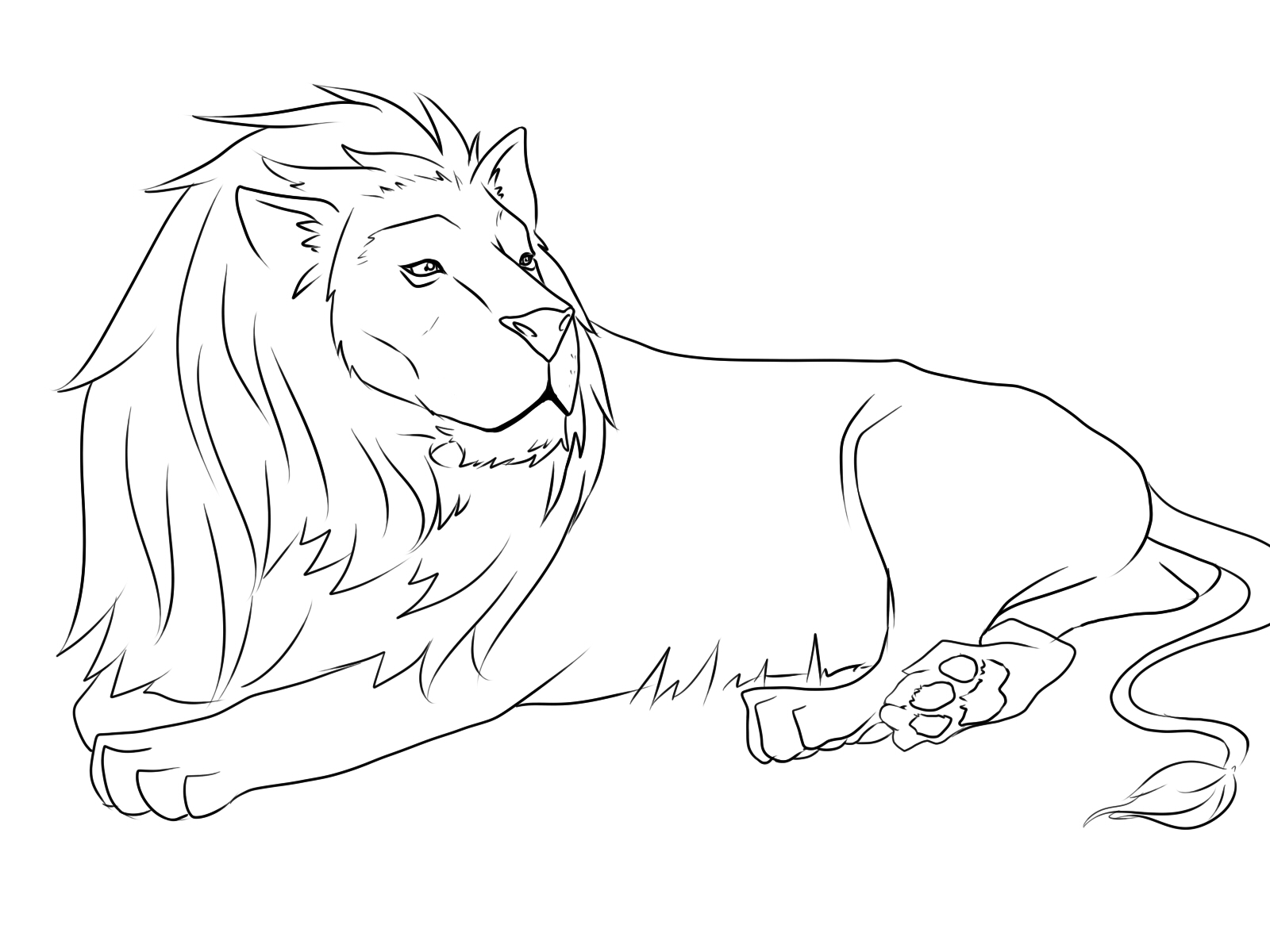 Lion Lying Down Drawing At Getdrawings