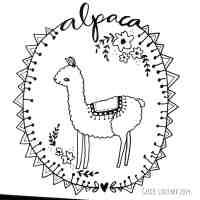 Llama Face Drawing at GetDrawings   Free download