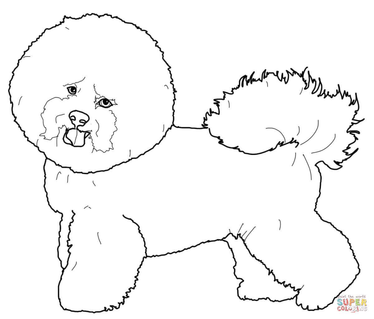 Maltese Dog Drawing At Getdrawings