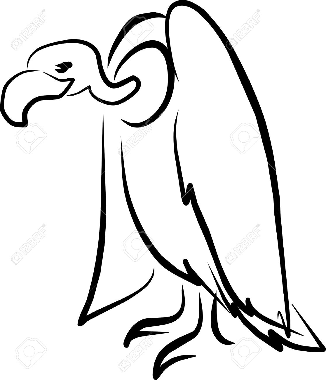 The Best Free Vulture Drawing Images Download From 202
