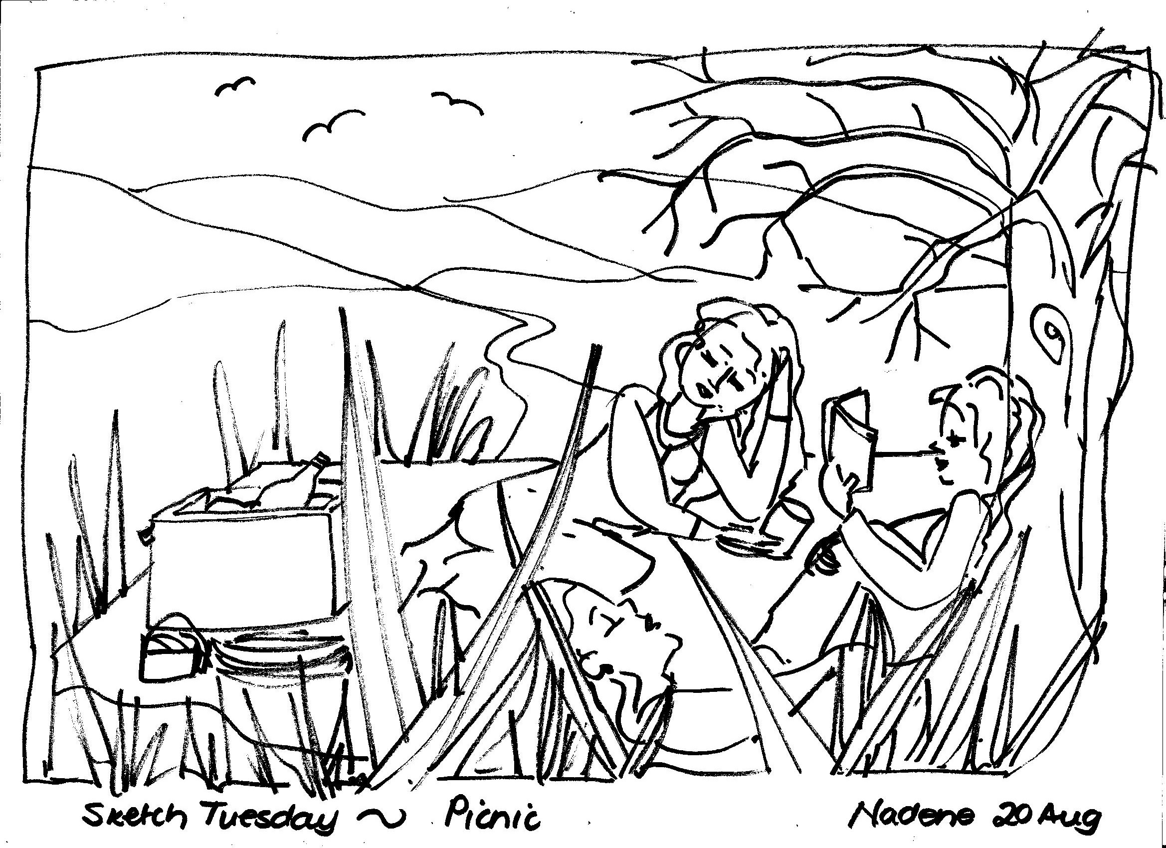 The Best Free Camping Drawing Images Download From 298