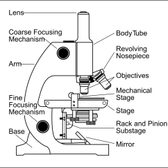 Diagram Of A Microscope And Functions Its Parts Storage Array Drawing Label At Getdrawings Free For