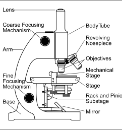 1350x1325 diagram compound microscope diagram worksheet [ 1350 x 1325 Pixel ]