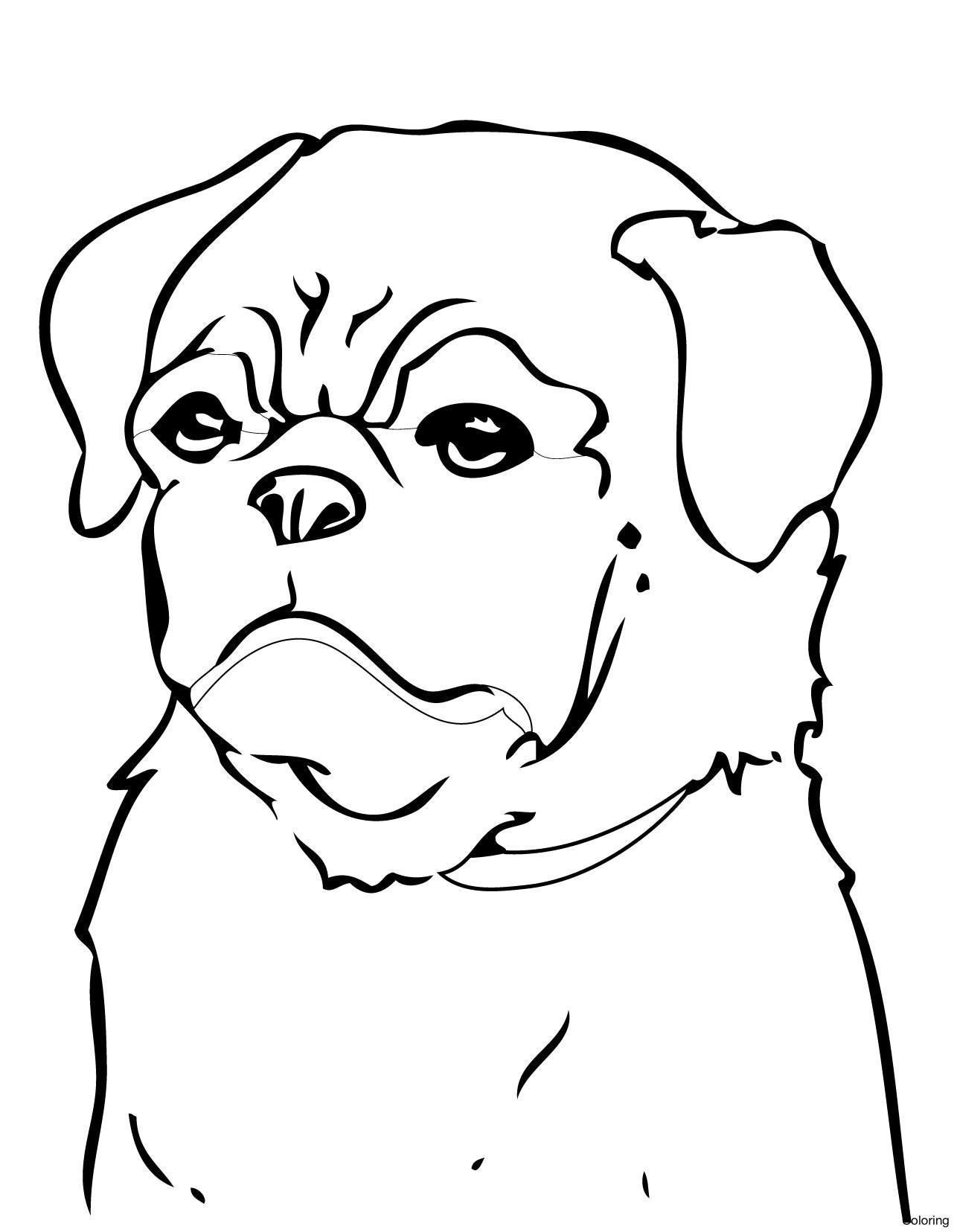 Minecraft Dog Drawing At Getdrawings