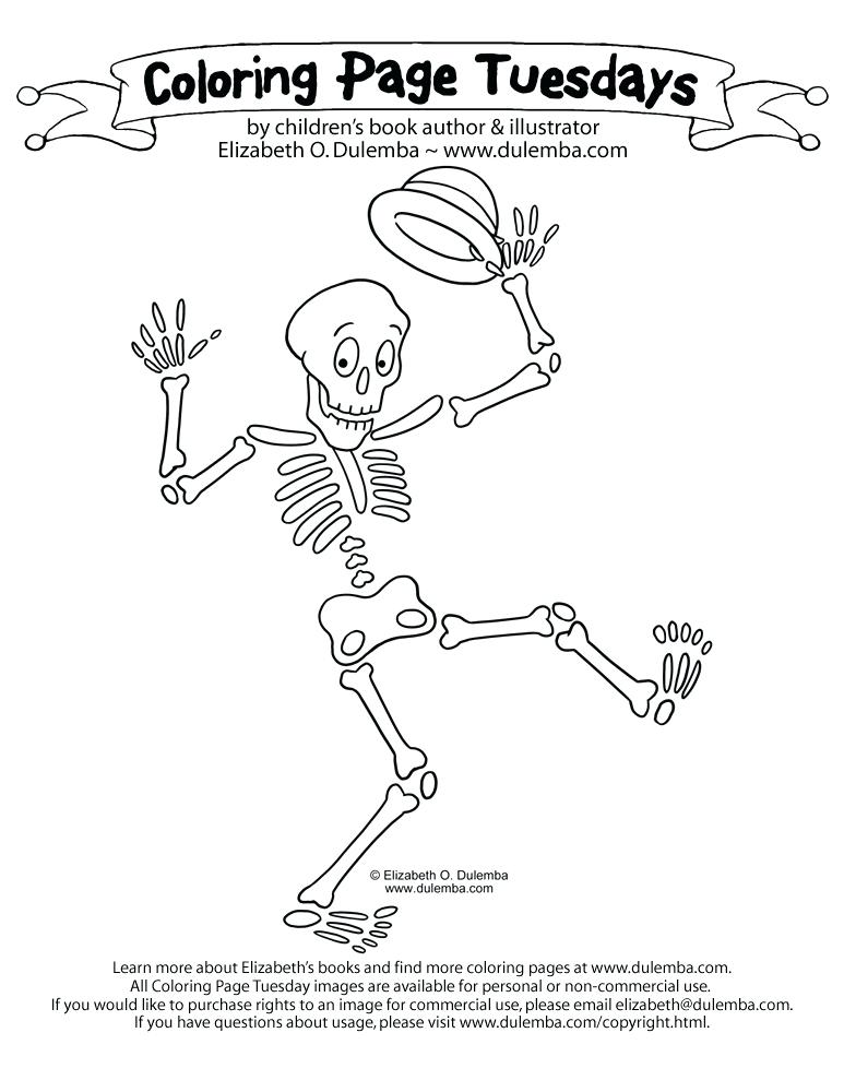 The best free Skeleton drawing images. Download from 3391