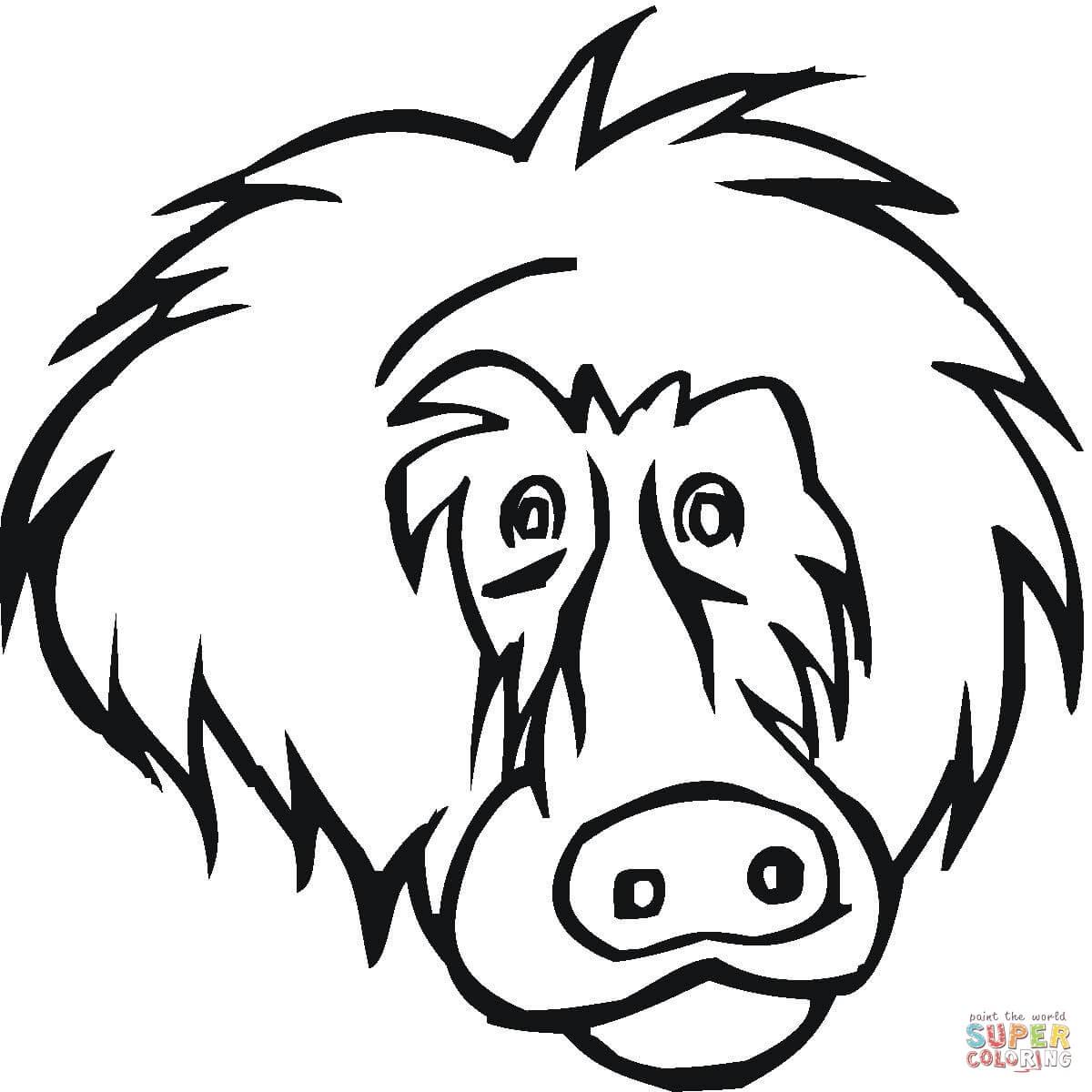 Monkey Face Drawing At Getdrawings