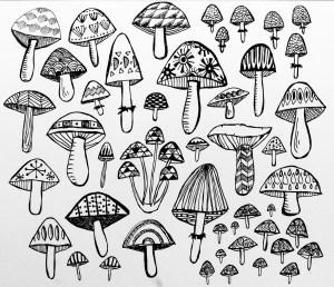 mushroom drawing trippy draw drawings line pear rare getdrawings paintingvalley