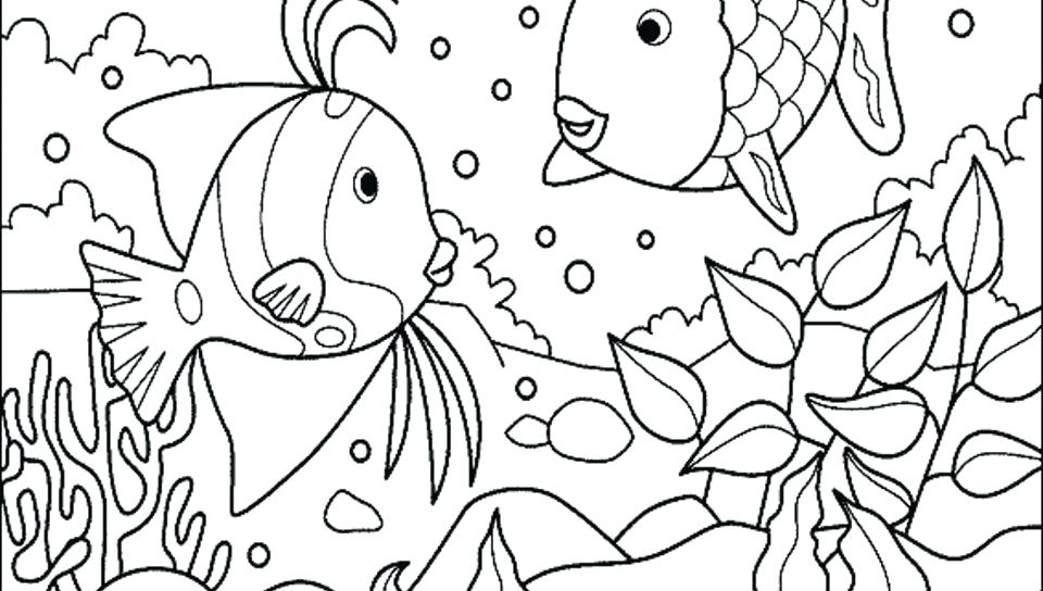 The best free Ecosystem drawing images. Download from 121