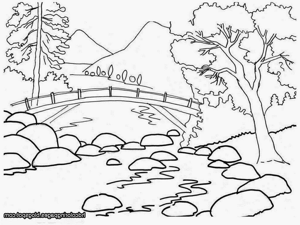 Outline Drawing Of Nature At Getdrawings