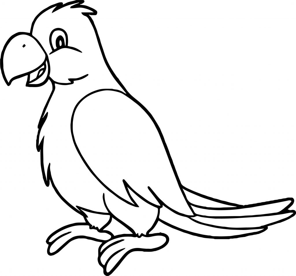Parrot Line Drawing At Getdrawings