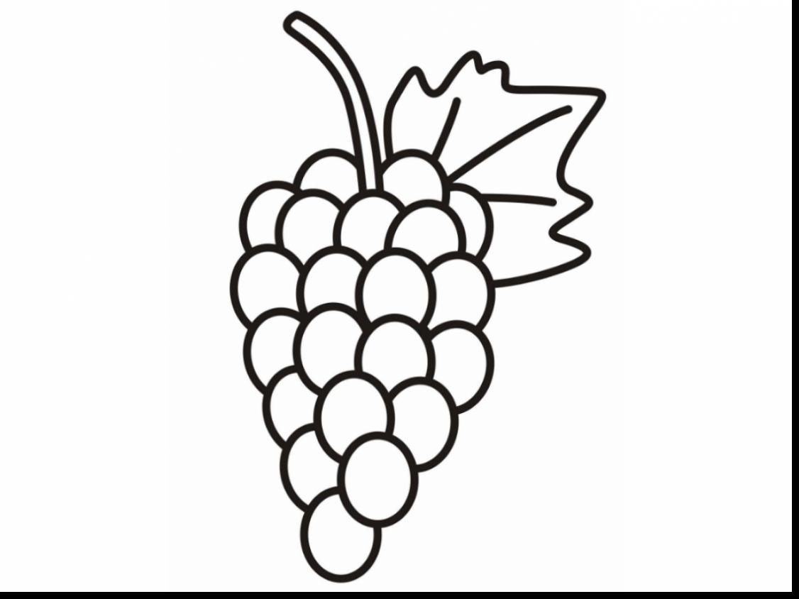 Grapes coloring page ronniebrownlifesystems