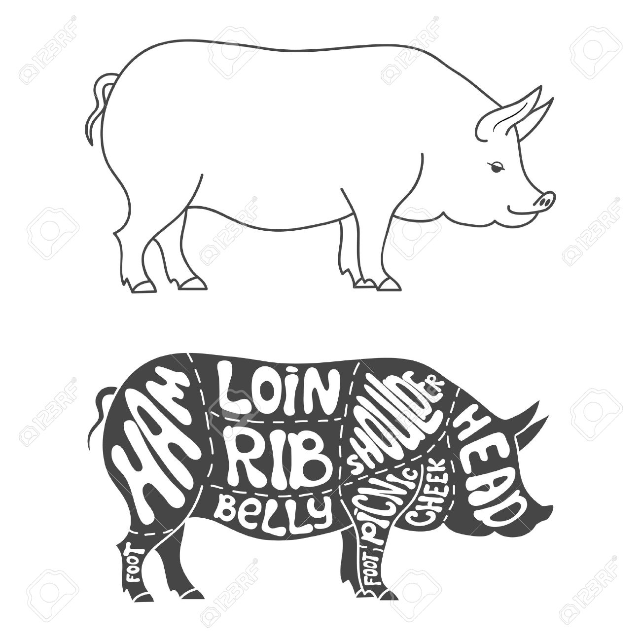 pig cuts diagram weg motor thermistor wiring butcher drawing at getdrawings com free for personal use 1300x1300 pork hand drawn scheme royalty