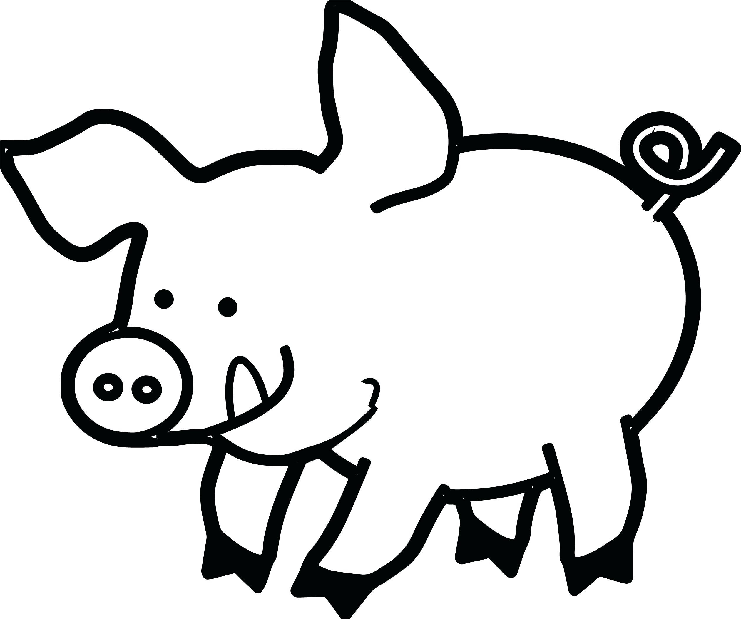 Pig Face Drawing At Getdrawings