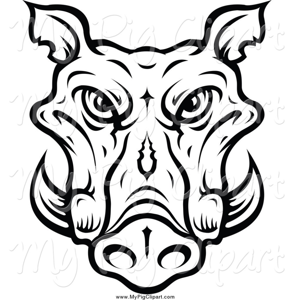 medium resolution of 1024x1044 swine clipart of a lineart tusked boar head by vector tradition sm