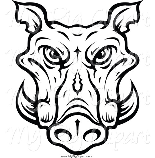 small resolution of 1024x1044 swine clipart of a lineart tusked boar head by vector tradition sm