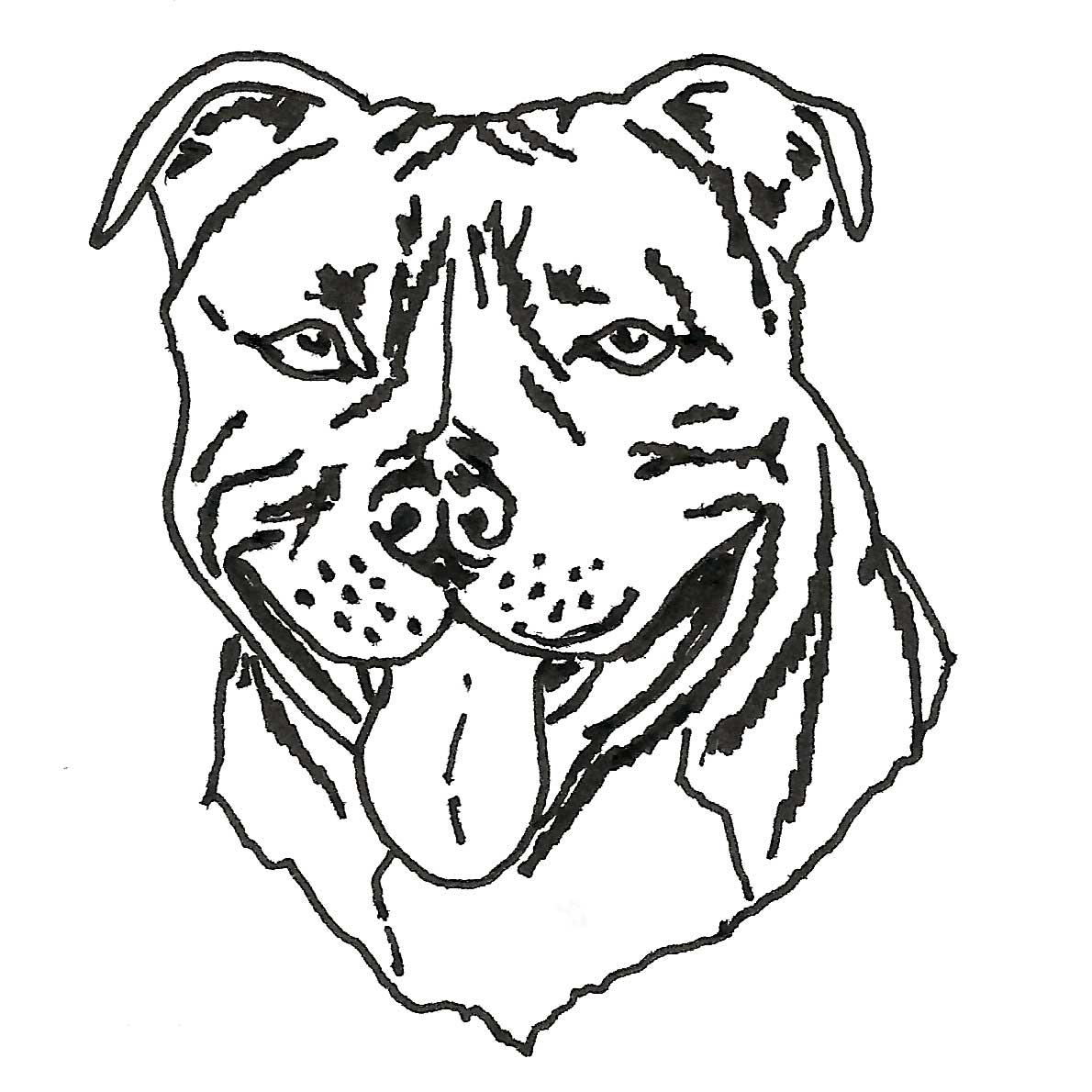 Pitbull Puppy Drawing At Getdrawings