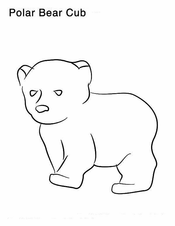 Polar Bear Cub With Fish Coloring Page