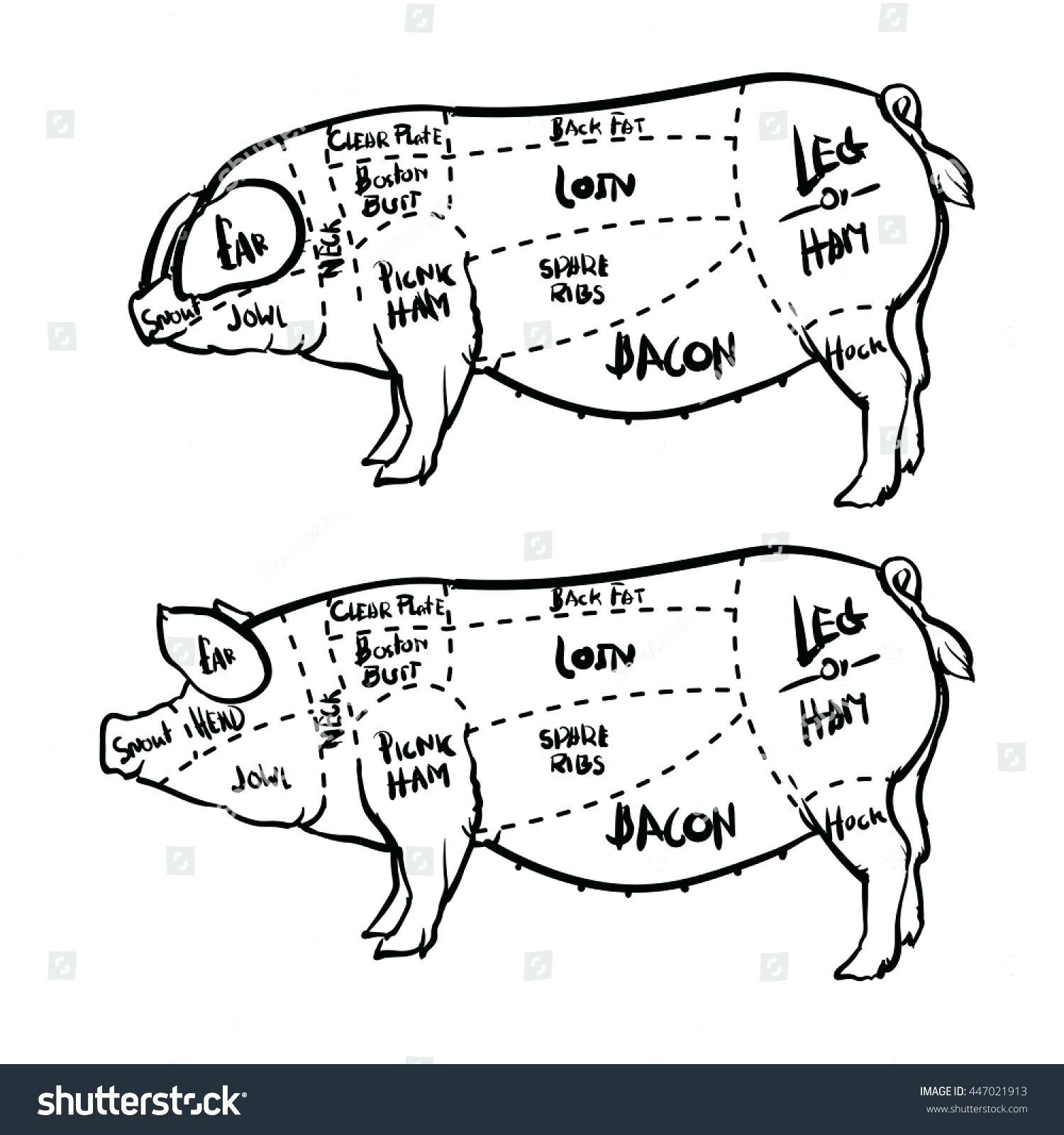 hight resolution of 1500x1600 diagram pork butcher cuts diagram old time shop hog poster