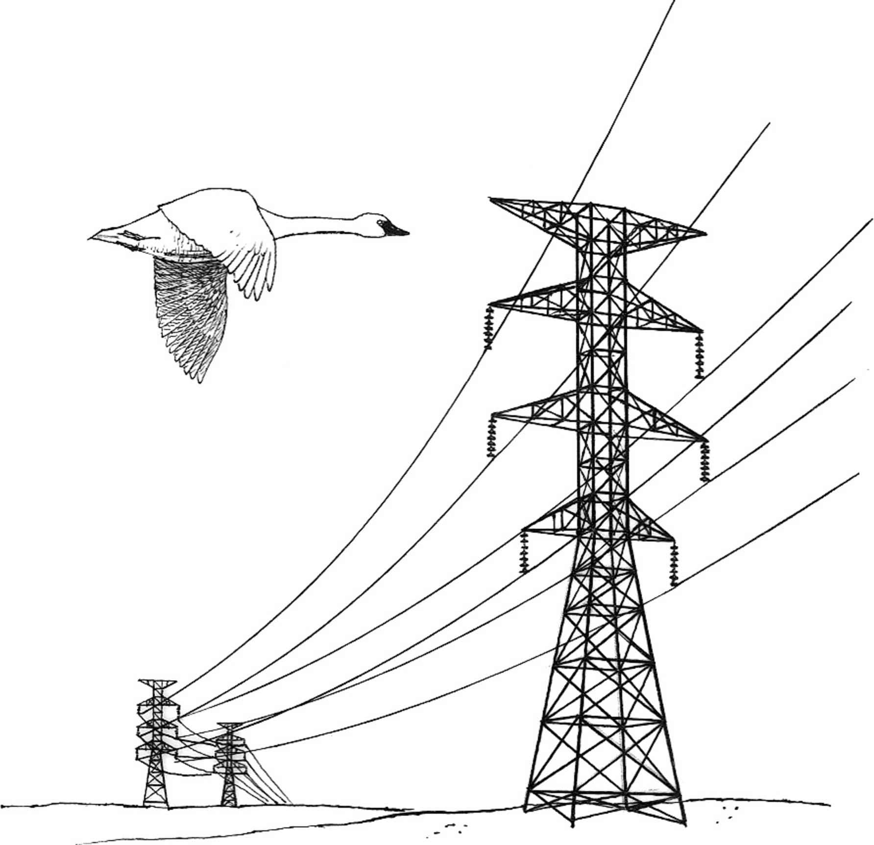 Power Line Drawing At Getdrawings