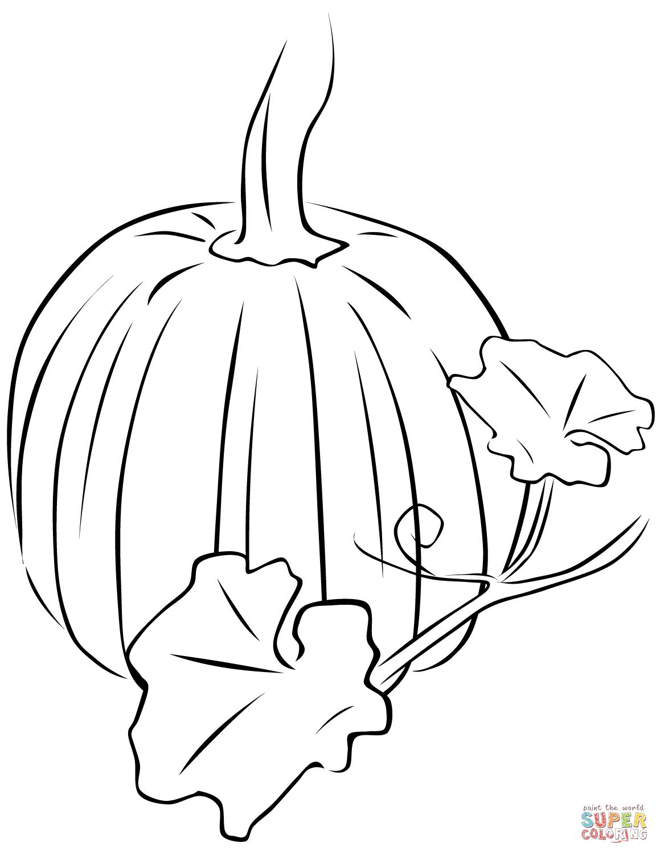 Pumpkin Leaf Drawing At Getdrawings