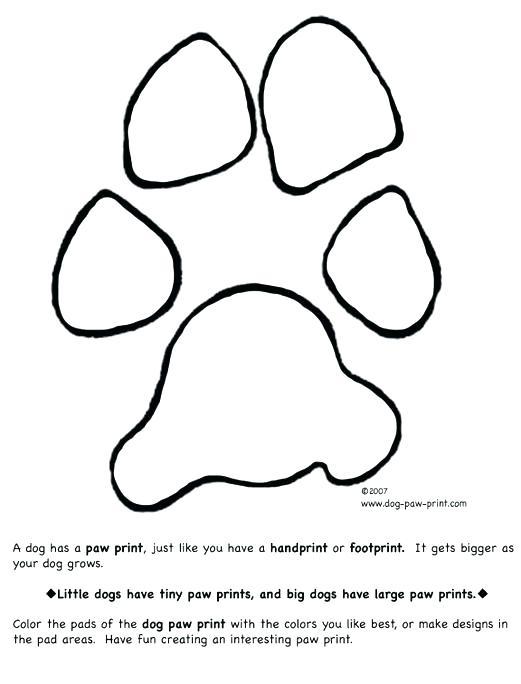 Puppy Paw Drawing : puppy, drawing, Puppy, Drawing, GetDrawings, Download