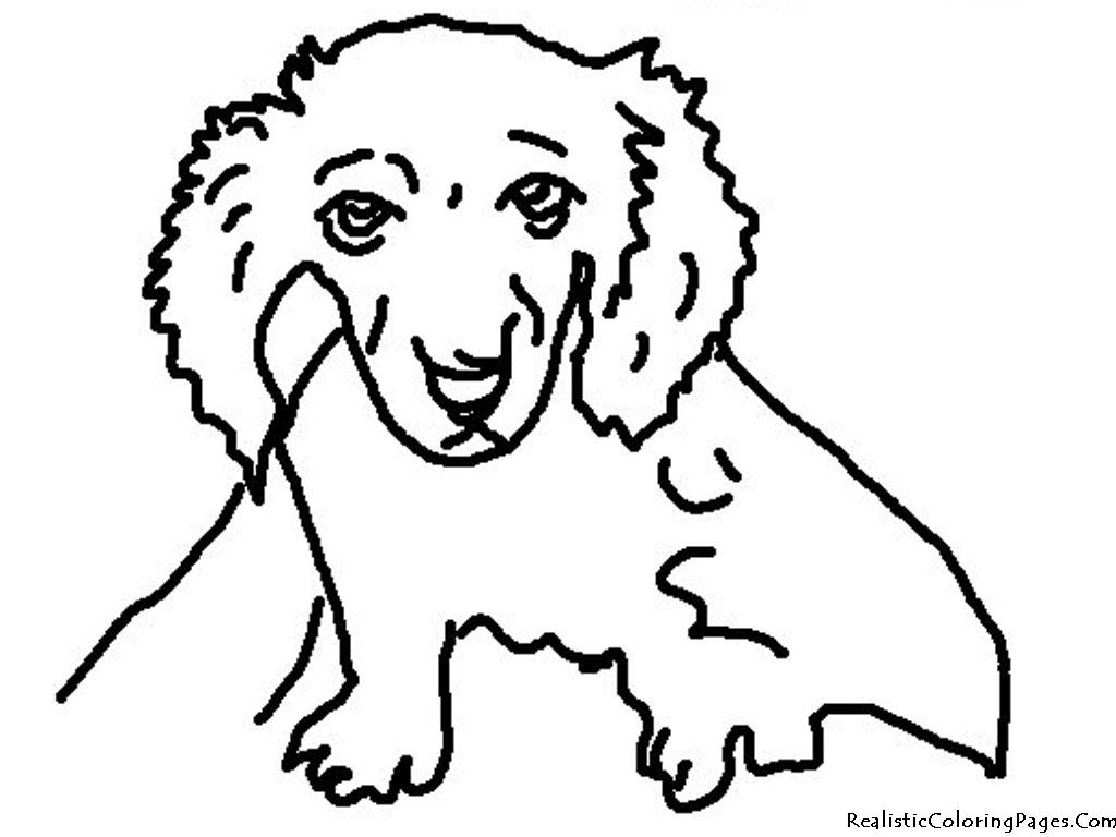 Prairie Dog Easy Drawing