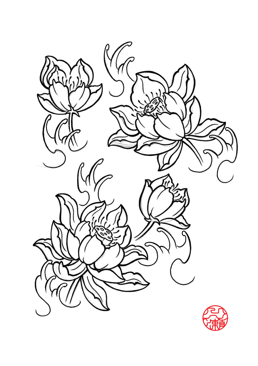 Realistic Lotus Drawing : realistic, lotus, drawing, Realistic, Lotus, Flower, Drawing, GetDrawings, Download