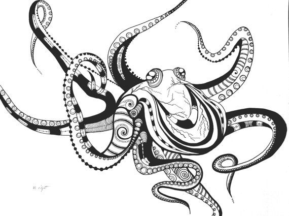 Octopus Drawing Step By Step At Getdrawings Com