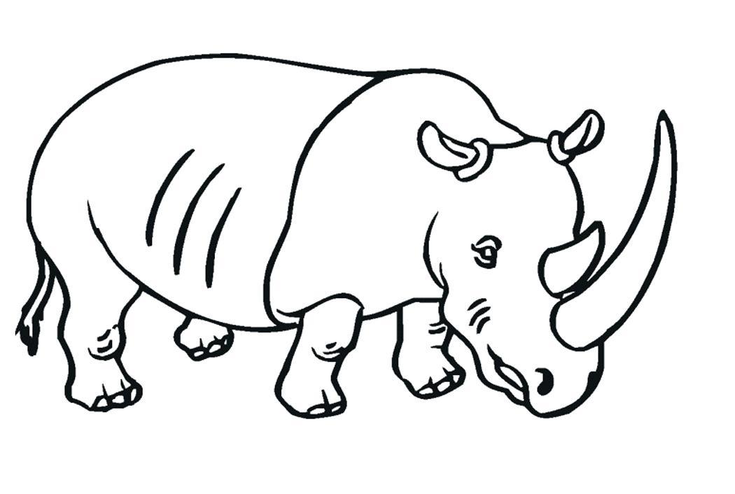 Baby Rhino Drawing At Getdrawings Com