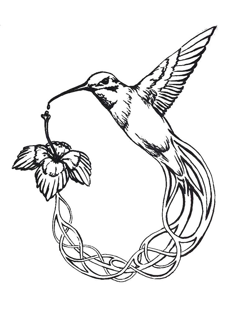 Ruby Throated Hummingbird Drawing at GetDrawings Free
